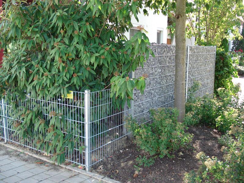 Bildergalerie Cum Lapis Die Gitter Stein Wand